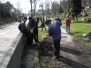 Rasų kapinių tvarkymas